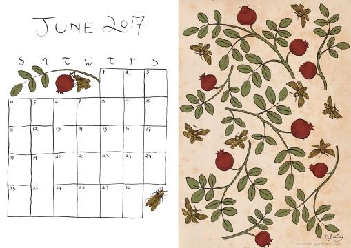 June 2017 Calendar - colour