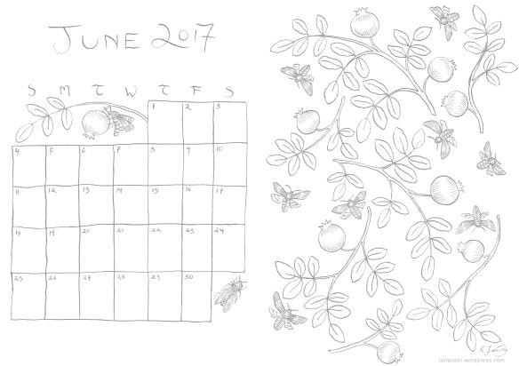 June 2017 Calendar - lines