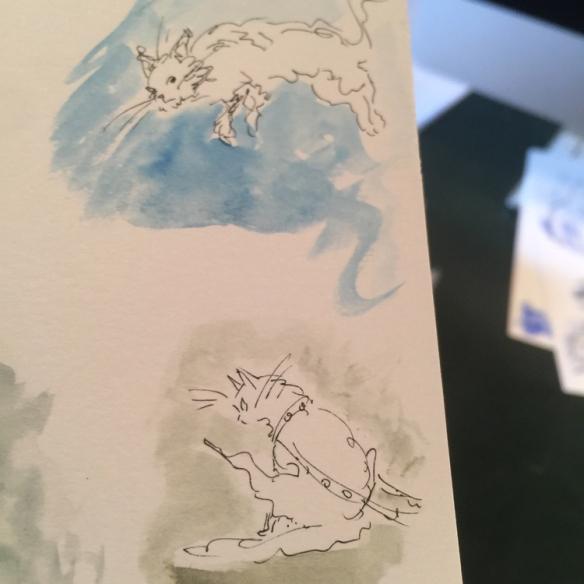 2020-03-27-KJennings-Cat3