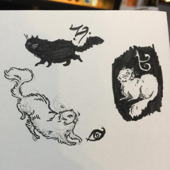2020-03-27-KJennings-Cat4