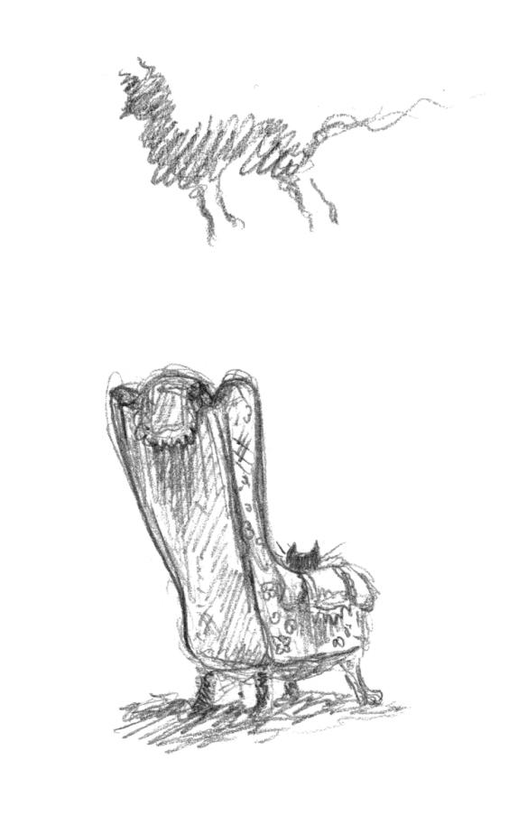 2020-03-27-KJennings-Cat6