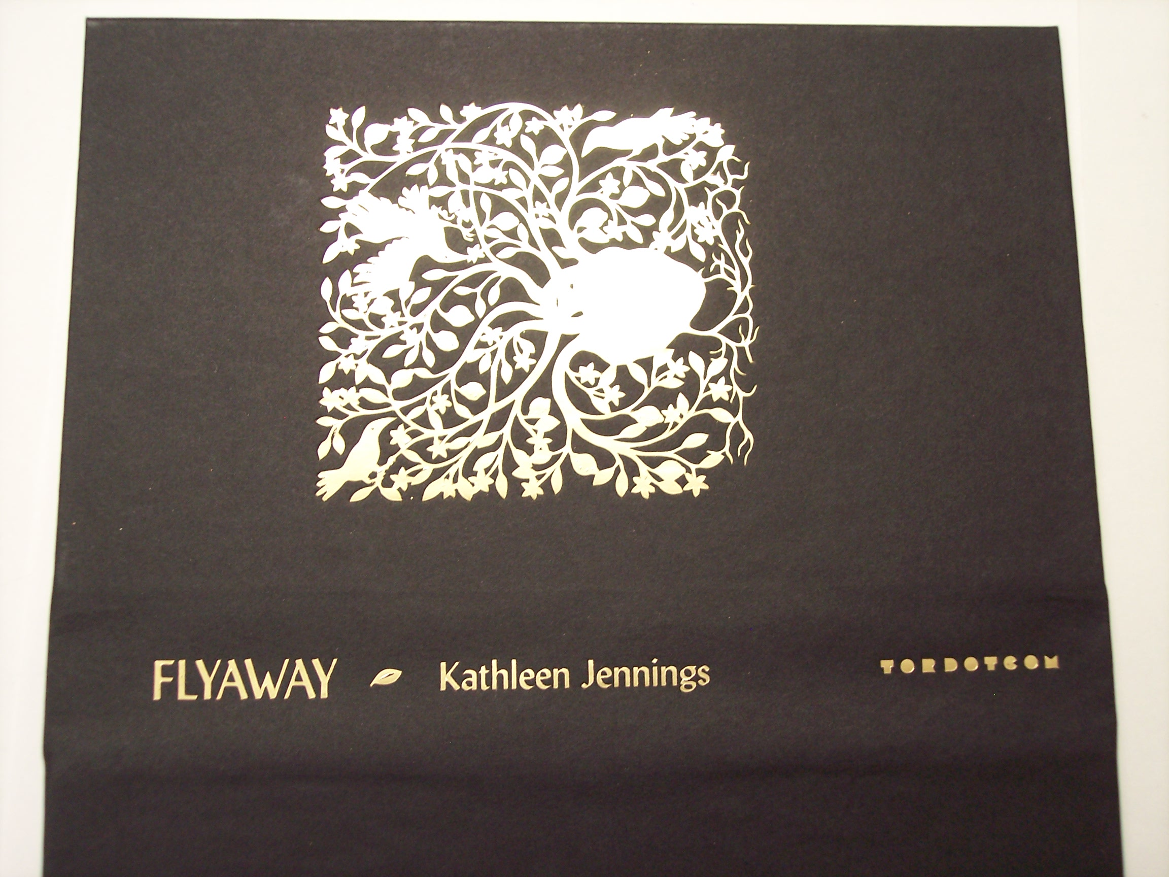 2020-05-22-FlyawayCase2