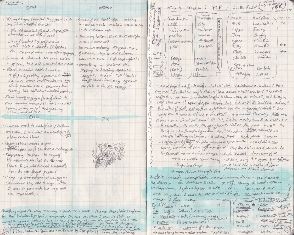 Two densely handwritten pages from the observation journal. The first has notes on things seen, heard, and done on 10 February 2020. The second mixes and matches elements of Pride and Prejudice and Little Red Riding Hood.