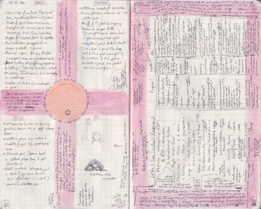 Double page of observation journal, densely handwritten. On the left, 5 things seen, heard, and done that day, a cafe sticker, and some sketches of a dog and musrooms. On the right, a table with a detailed but largely illegible breakdown of patterns between shows.