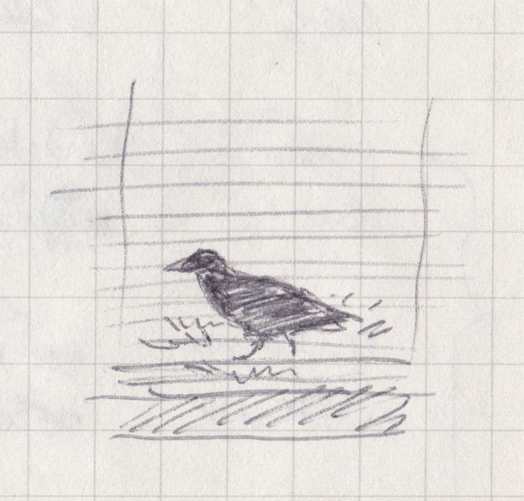 Pen sketch of a crow through venetian blinds