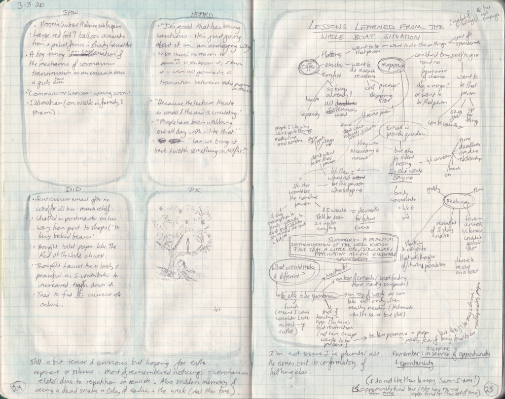 Double page of observation journal, densely handwritten. On the left, 5 things seen, heard, and done that day. On the right, a mindmap of lessons learned.