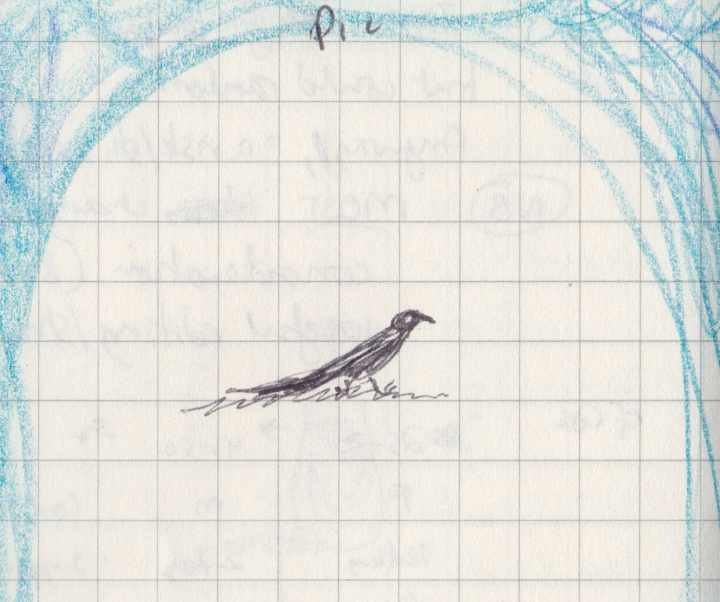 Tiny pen drawing of a pheasant coucal