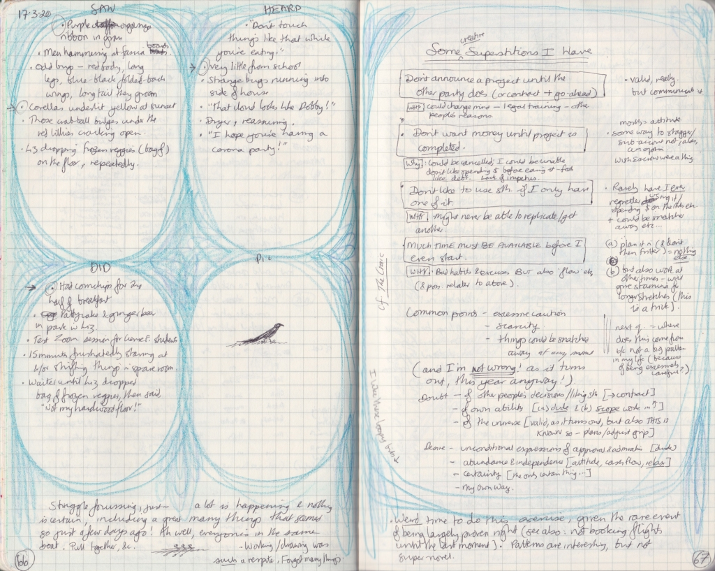 hand-written double spread of observation journal. On the left page, five things seen/heard/done and a drawing. On the right, densely handwritten notes.