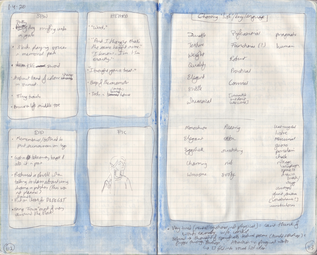 Two handwritten pages from the observation journal. The left notes 5 things seen, heard, and done, and a picture. The right page contains notes on lush/key language.