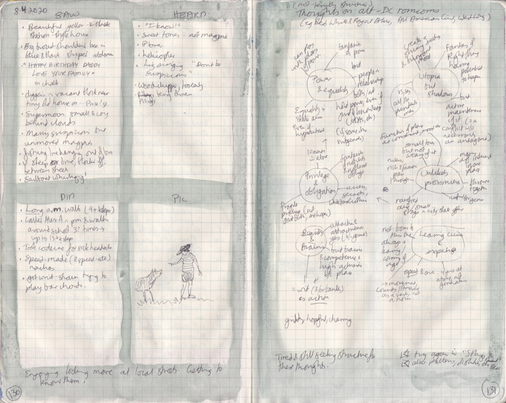 Double page spread from observation journal, handwritten. On the left, five things seen, heard, and done, and a picture. On the right, a chart of ideas.