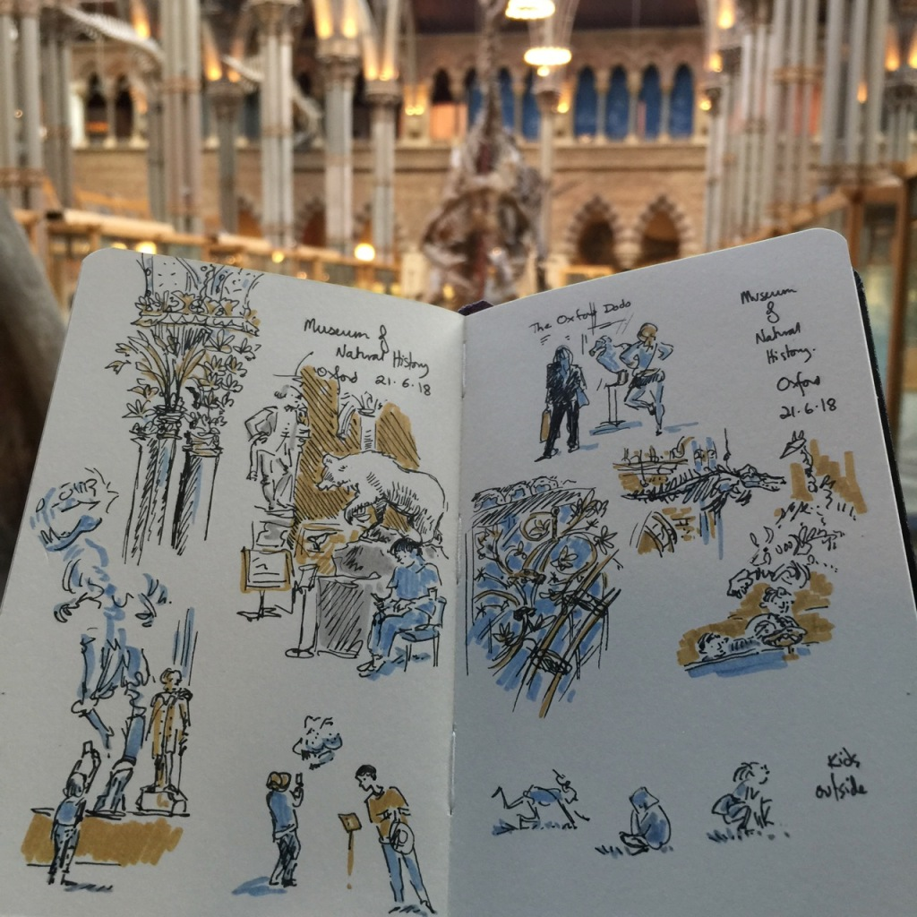 sketches of architecture and skeletons at the Museum of Natural History, Oxford