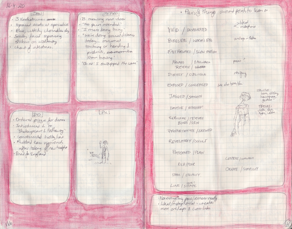 "Double-page spread of observation journal. On the left, five things seen, heard, done, and a picture. On the right a handwritten list of ""Pairs of things around points to lean on""."