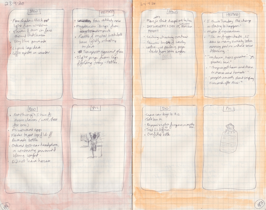 Double page observation journal spread. Each is divided into four boxes, containing respectively 5 things seen, heard, and done, and a picture (one of me standing on one leg pulling my hair, the other of a hot water bottle).