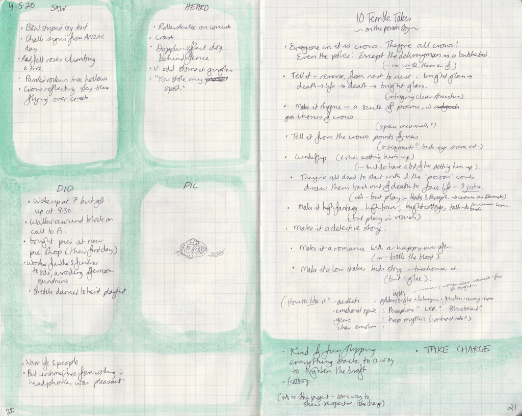 Two pages of observation journal, densely handwritten. On the left, five things seen, heard and done, and a picture (of a painted rock). On the right, the exercise described below.