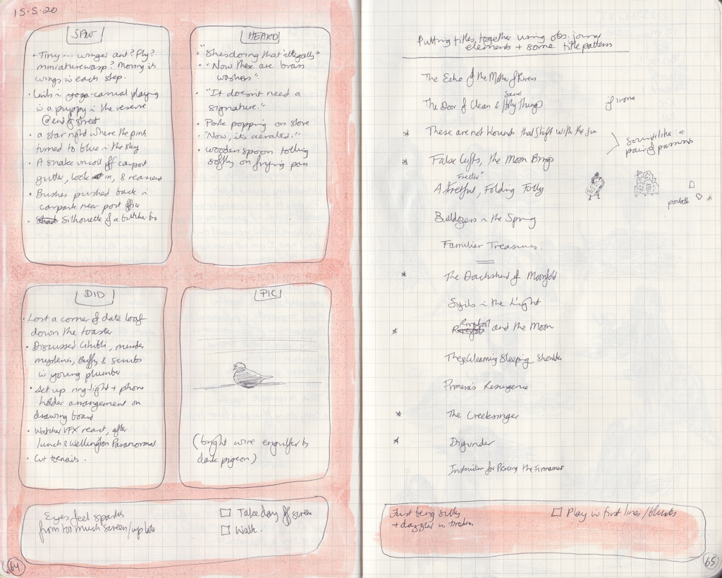 Double page spread from the observation journal, handwritten. On the left, things seen, heard, and done. On the right, a series of silly book titles.