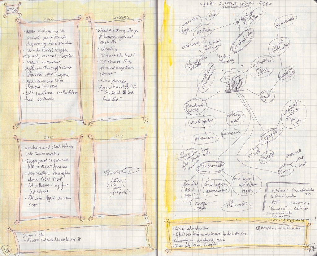 Double-page spread of observation journal, densely hand-written. On the left, five things seen, heard, and done, and a picture of a cake server. On the right, thoughts on groves.