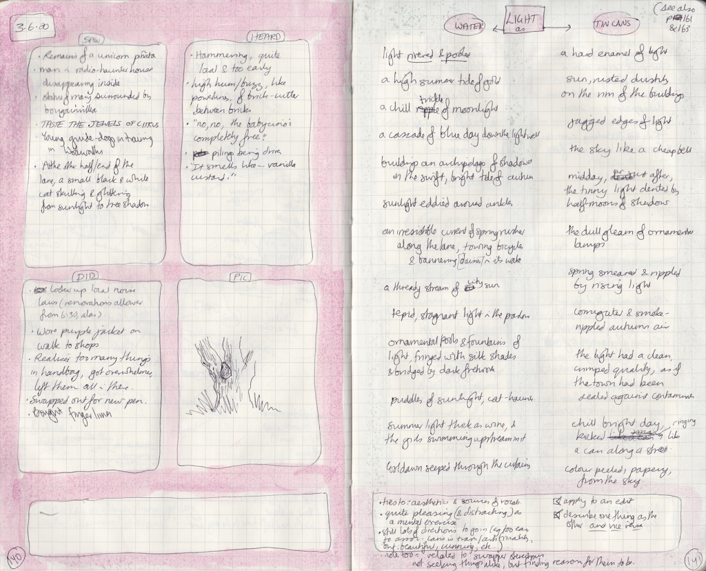 Observation journal spread, densely handwritten, pink watercolour border. On the left page, five things seen, heard, and done, and a picture of a rock grown into a tree. On the right, lists of swapped descriptions.