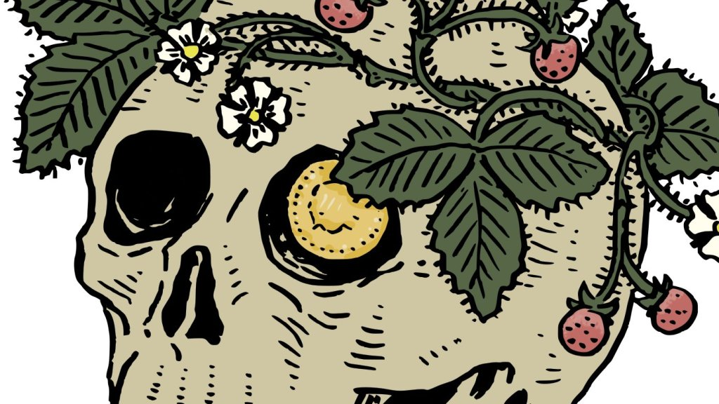 Section of an ink and digital colour illustration of a skull with a coin in its eye, and crowned with strawberries.