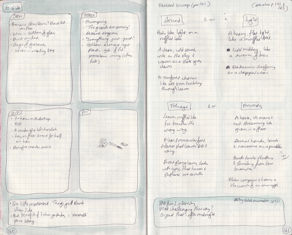 Double-page spread of observation journal. On the left, five things seen, heard, and done, and a drawing of a honeyeater. On the right, swapped descriptions.