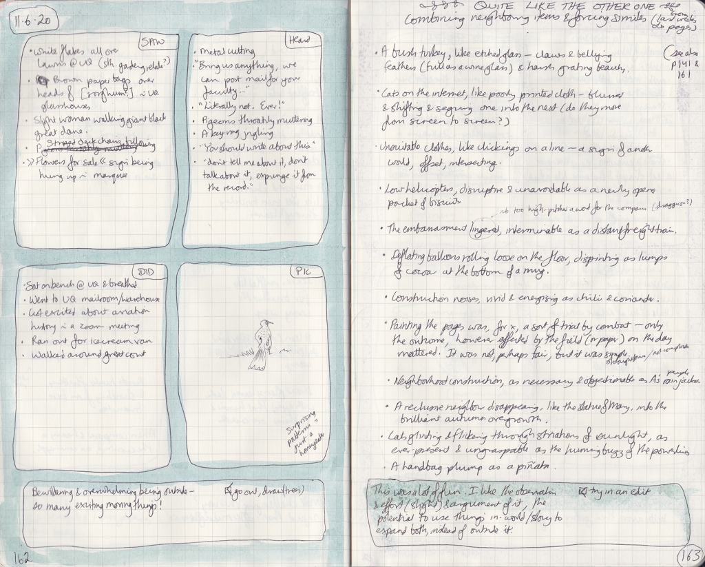 Double-page spread of observation journal. On the left, five things seen, heard, and done, and a drawing of a honeyeater. On the right, a list of similes.