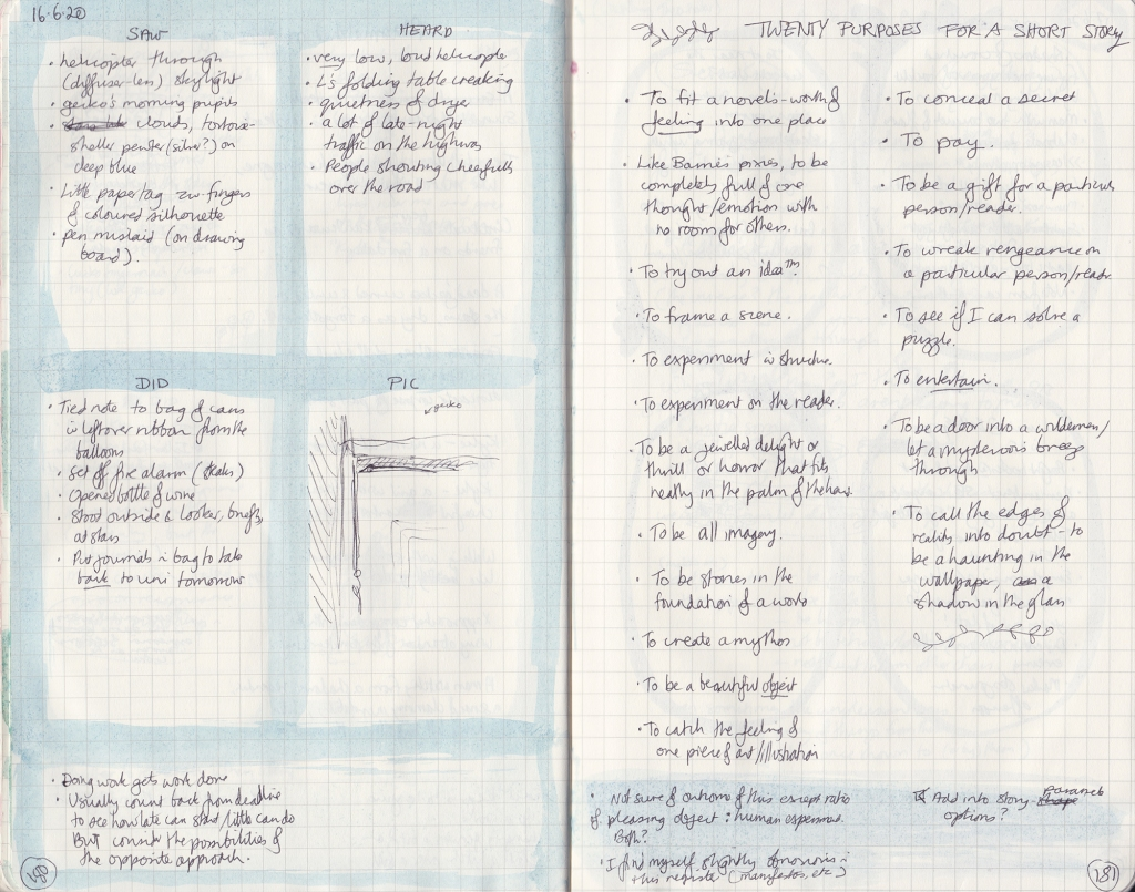 Densely handwritten double page of observation journal. On the left, five things seen, heard and done, and a gecko on top of a door. On the right, notes on story purposes.