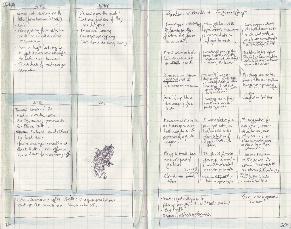 Two page spread of densely handwritten observation journal. On the left page, five things seen, heard and done, and a drawing of a cat. On the right, the exercise described.