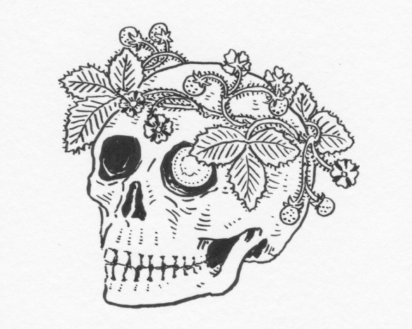 Drawing of skull crowned by strawberries, with a coin in its eyesocket.